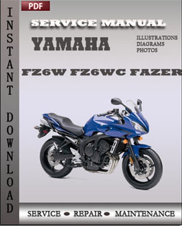 Yamaha Fz Maintenance Schedule