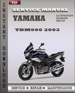 Yamaha TDM900 2003 manual