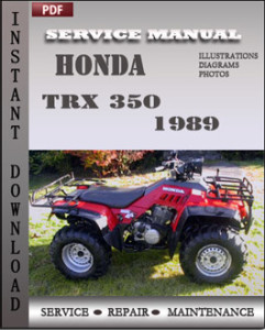 Honda TRX 350 1989 global