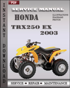 Honda TRX250 EX 2003 global