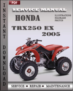 Honda TRX250 EX 2005 global