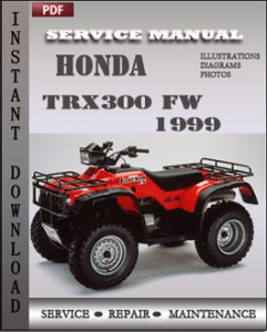Honda TRX300 FW 1999 global