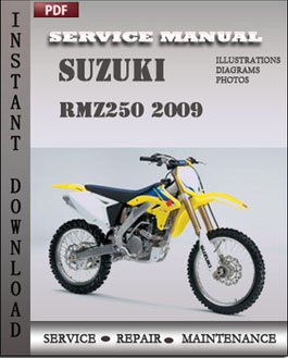 Suzuki RMZ250 2009 manual