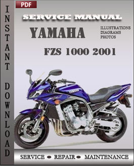 Yamaha FZS 1000 2001 manual