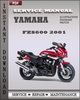 Yamaha FZS600 2001 manual