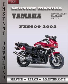 Yamaha FZS600 2002 manual