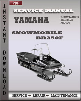Yamaha Snowmobile BR250F manual
