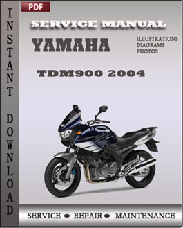 Yamaha TDM900 2004 manual