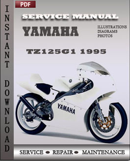 Yamaha TZ125G1 1995 manual
