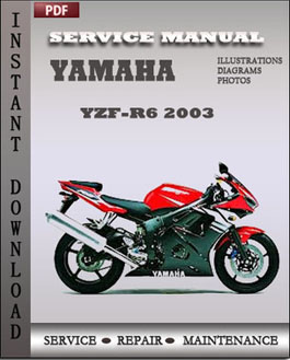 Yamaha YZF-R6 2003 manual