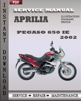 Aprilia Pegaso 650 IE 2002 manual