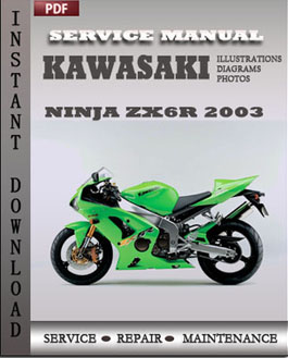 Kawasaki Ninja ZX6R 2003 manual