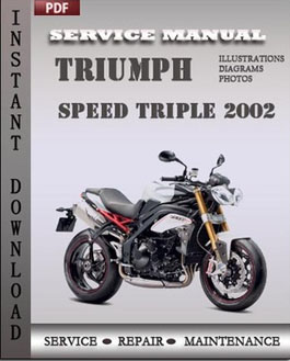 Triumph Speed Triple 2002 manual
