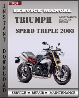 Triumph Speed Triple 2003 manual