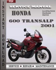 Honda 600 Transalp 2001 global