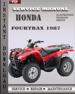 Honda Fourtrax 1987 global