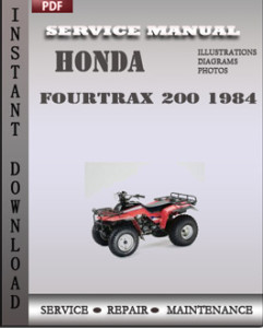 Honda Fourtrax 200 1984 global