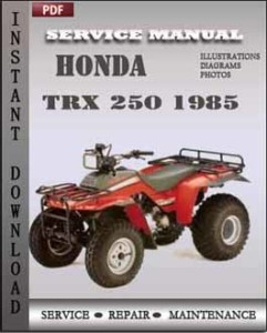 Honda TRX 250 1985 global