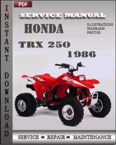 Honda TRX 250 1986 global