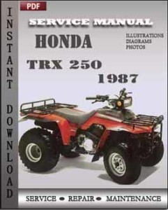 Honda TRX 250 1987 global