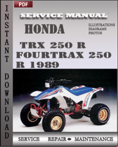 Honda TRX 250 R Fourtrax 250 R 1989 global