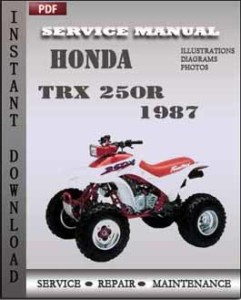 Honda TRX 250R 1987 global