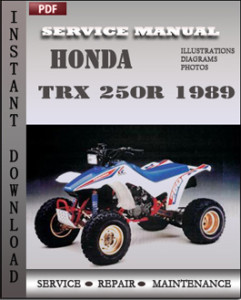Honda TRX 250R 1989 global