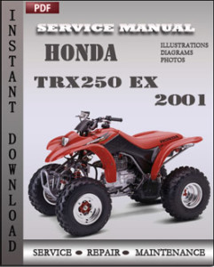 Honda TRX250 EX 2001 global
