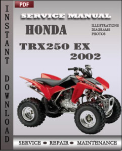 Honda TRX250 EX 2002 global