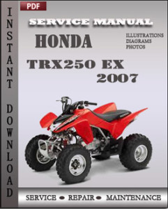 Honda TRX250 EX 2007 global
