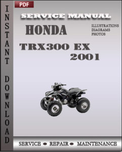 Honda TRX300 EX 2001 global