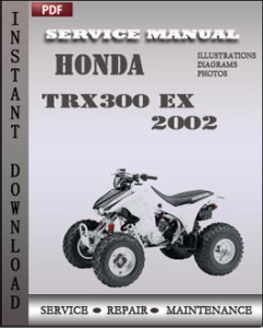 Honda TRX300 EX 2002 global