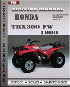 Honda TRX300 FW 1990 global