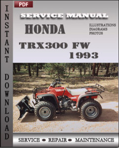 Honda TRX300 FW 1993 global