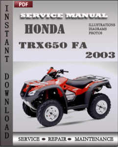 Honda TRX650 FA 2003 global