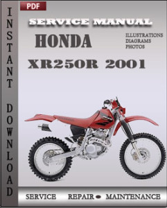Honda XR250R 2001 global